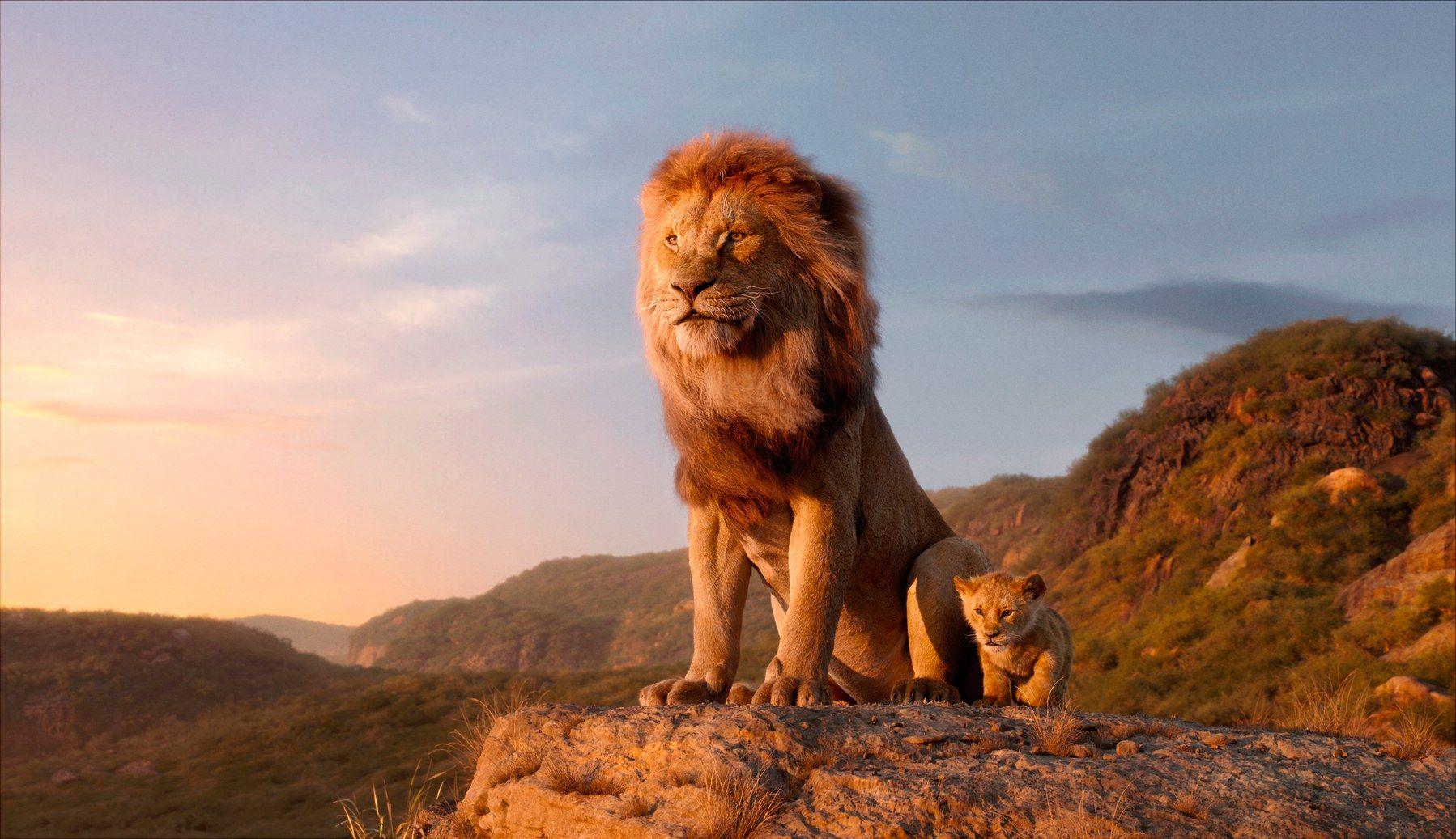Картинки с новыми львами